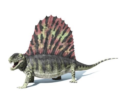 3D rendering of a Dimetrodon dinosaur, side view Poster Print - Item # VARPSTVET600011P