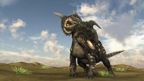 Brown Einiosaurus walking across a barren landscape Poster Print - Item # VARPSTKVA600444P