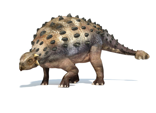 3D rendering of an Ankylosaurus dinosaur Poster Print - Item # VARPSTVET600002P