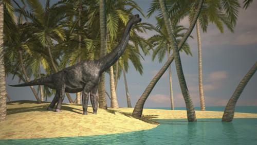 Large Brachiosaurus grazing at the water's edge Poster Print - Item # VARPSTKVA600007P