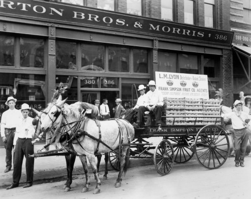 1890s Mule Drawn Fruit Delivery Wagon On City Street Surrounded By Men Looking At Camera Print By Vintage Collection - Item # VARPPI177951