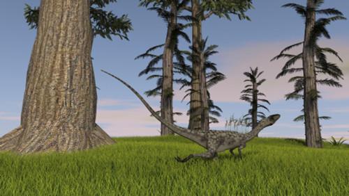 Coelophysis running through a grassy field Poster Print - Item # VARPSTKVA600041P