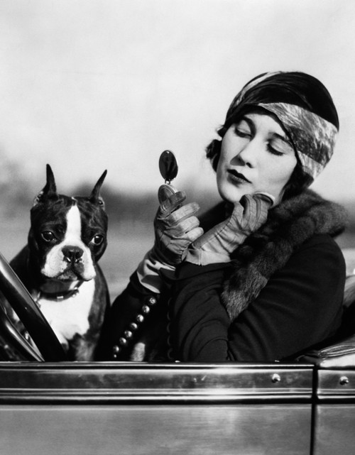 1920s Flapper In Convertible Powdering Her Cheek In Mirror With Boston Bulldog In Her Lap Print By Vintage Collection - Item # PPI172430LARGE