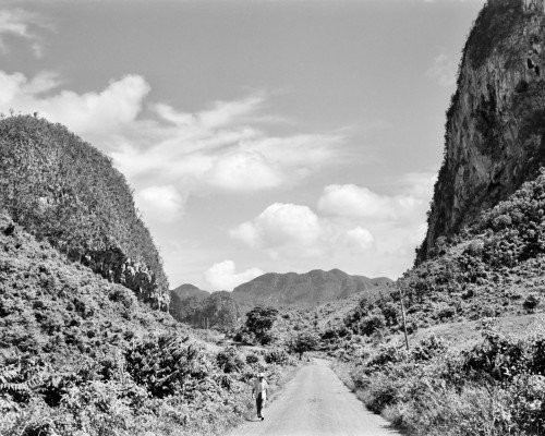 1950s Rural Road Outside Of Town Of Vinales In Pinar Del Rio Province Cuba Poster Print By Vintage Collection (22 X 28) - Item # PPI178789LARGE
