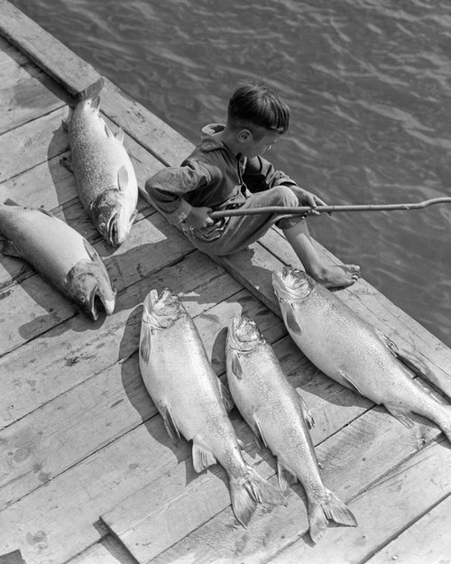 1930s Boy Seated On Dock With 5 Large Fish Fishing With Stick Pole Poster Print By Vintage Collection - Item # VARPPI176525