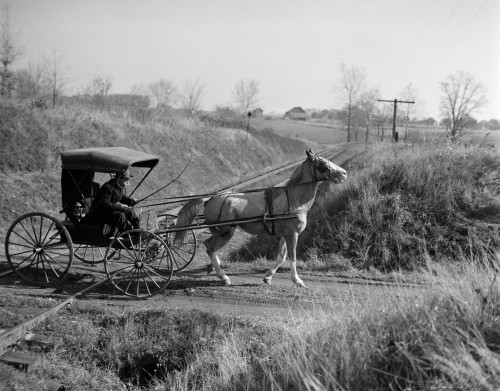 1890s-1900s Rural Country Doctor Driving Horse & Carriage Across Railroad Tracks Print By Vintage Collection - Item # PPI194152LARGE