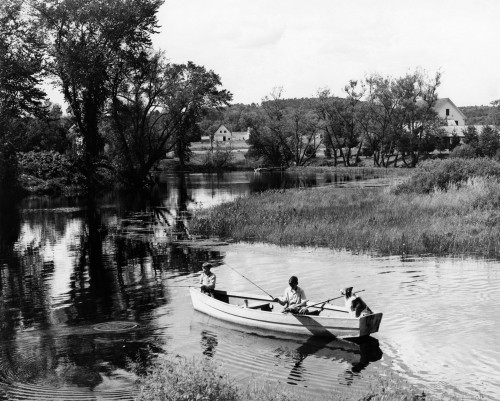 1930s-1940s Pair Of Boys In Rowboat With Collie Fishing In Farm Area Poster Print By Vintage Collection - Item # VARPPI176378