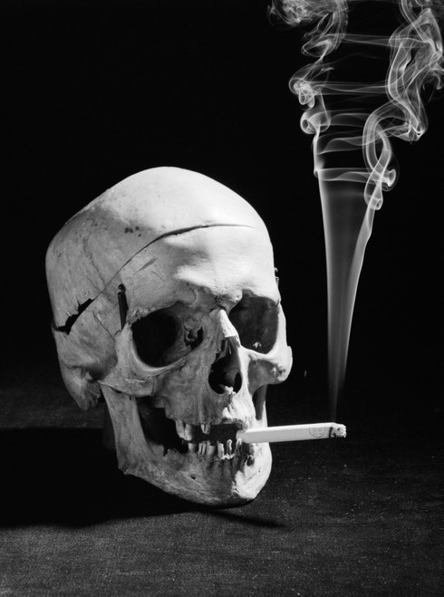 1930s Human Skull Smoking A Cigarette Poster Print By Vintage Collection (24 X 36) - Item # PPI179460LARGE
