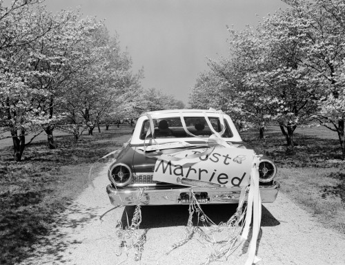 1960s Rear Of Car With Just Married Sign And Streamers Driving Along Road Of Flowering Trees Print By Vintage Collection - Item # VARPPI177761