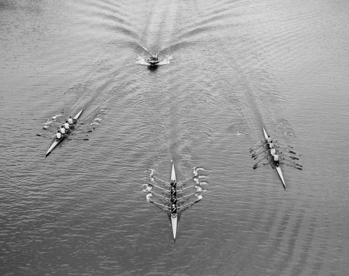 1950s Aerial View Of Rowing Competition Poster Print By Vintage Collection - Item # VARPPI172456