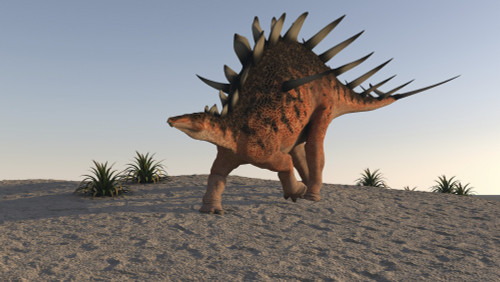 Kentrosaurus walking on sandy terrain Poster Print - Item # VARPSTKVA600533P