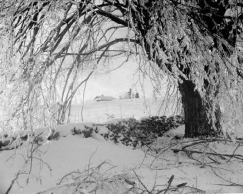 Winter scenic Poster Print - Item # VARSAL255422026