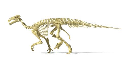 3D rendering of an Iguanodon dinosaur skeleton, side view Poster Print - Item # VARPSTVET600029P