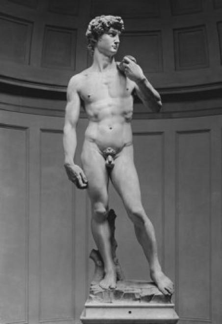 David Michelangelo Buonarroti (8 x 10) Marble Poster Print (8 x 10) - Item # MINSAL9959639