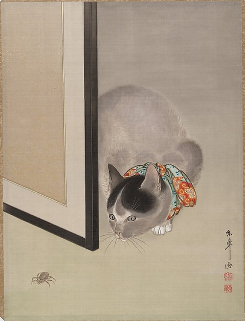 Cat Watching a Spider Poster Print by Oide Toko (8 x 10) (8 x 10) - Item # MINMET50826