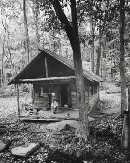 Woman standing with a dog on the porch of a log cabin Poster Print - Item # VARSAL25520742