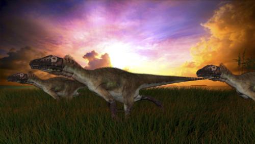 Three Utahraptors running across prehistoric grasslands at sunset Poster Print - Item # VARPSTKVA600230P