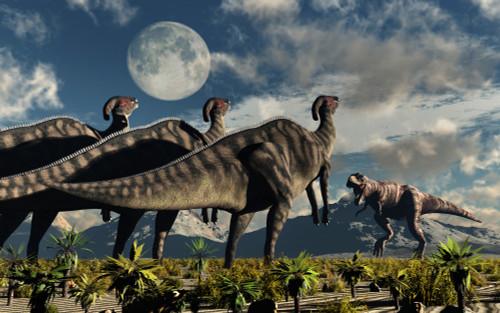 Hadrosaurid duckbill dinosaurs use intense soundwaves to prevent a Tyrannosaurus Rex from attacking them Poster Print - Item # VARPSTMAS100571P