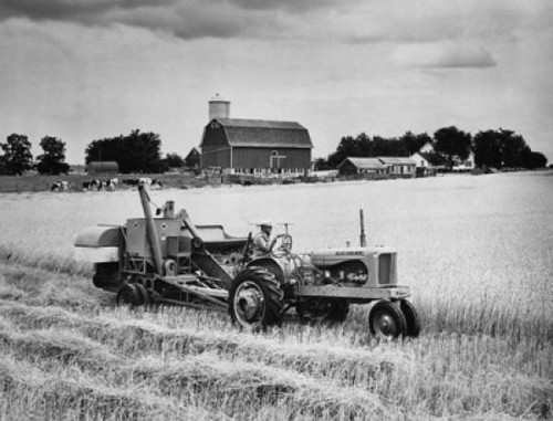 Farmer harvesting wheat crop with a combine in a field  Berlin  Wisconsin  USA Poster Print - Item # VARSAL2554627