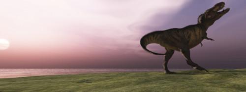 A Tyrannosaurus Rex dinosaur roars his defiance on an oceanside bluff Poster Print - Item # VARPSTCFR200040P