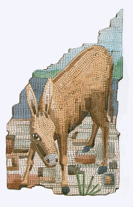 The Golden Ass Poster Print by Science Source - Item # VARSCIBT0506