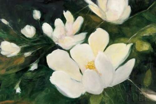 Magnolia Blooms Crop No Petal Poster Print by Julia Purinton - Item # VARPDX30923