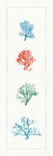 Water Coral VII Poster Print by Lisa Audit - Item # VARPDX18882