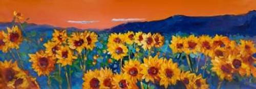 Sunset on Sunflower Fields Poster Print by Atelier B Art Studio - Item # VARPDXBEGFLO154