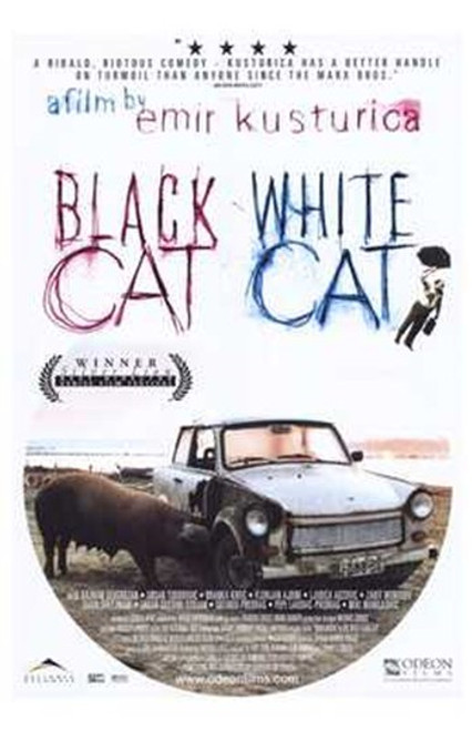 Black Cat White Cat Movie Poster (11 x 17) - Item # MOV203431