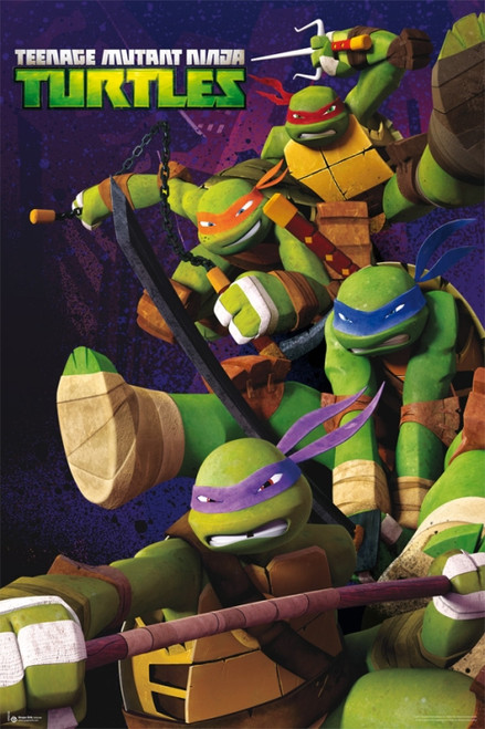 Ninja Turtles Poster Poster Print - Item # VARGPE4722