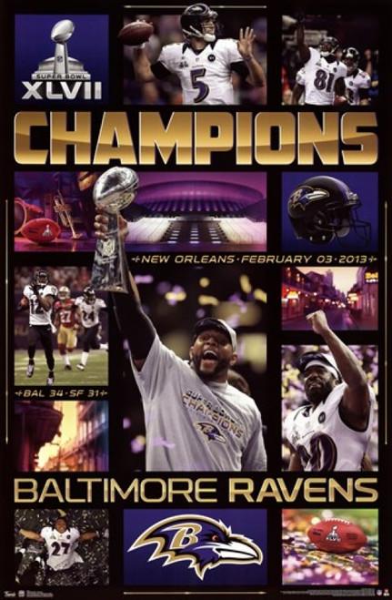 Super Bowl XLVII - Celebration Poster Poster Print - Item # VARTIARP5651