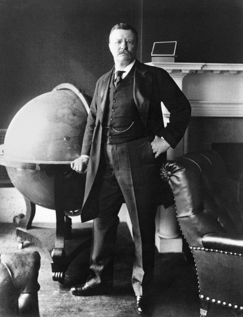 Theodore Roosevelt /N(1858-1919). 26Th President Of The United States. Photographed In 1903 In The White House. Poster Print by Granger Collection - Item # VARGRC0027729