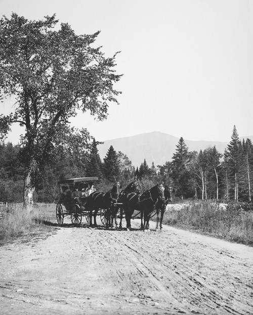 Maine: Horse Wagon, C1900. /Nhorse Wagon In Maine. Photographed C1900. Poster Print by Granger Collection - Item # VARGRC0099078