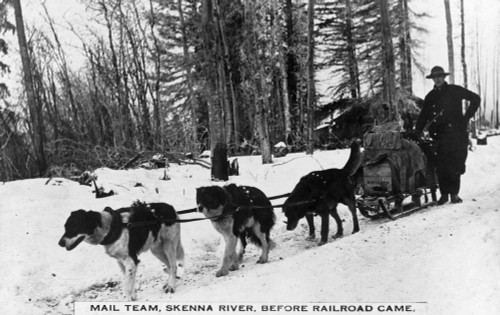 Canada: Dog Sled, C1920. /Na Dog Sled Mail Team Along The Skeena River In British Columbia, Canada. Photograph, C1920. Poster Print by Granger Collection - Item # VARGRC0266655