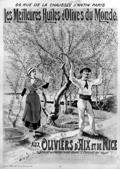 Advertisement: Olive Oil. /N'The Best Olive Oil In The World.' French Lithograph Poster, 1892, For Olive Oil Produced At Aix-En-Provence And Nice In The South Of France, 1892. Poster Print by Granger Collection - Item # VARGRC0118268