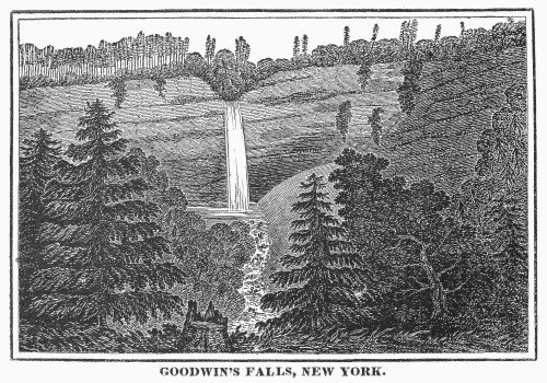 New York: Waterfall. /Ngoodwin'S Falls, New York. Wood Engraving, C1840. Poster Print by Granger Collection - Item # VARGRC0102219