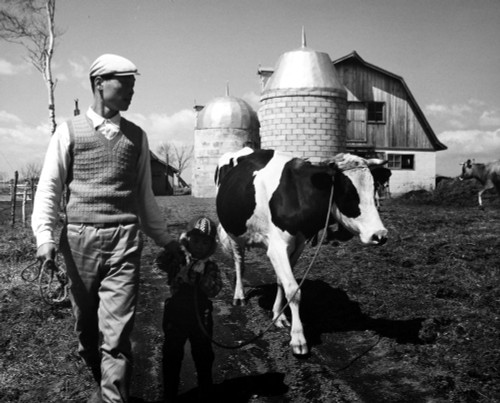 Japan: Land Reclamation. /Na Young Japanese Farmer, Settler On Former Wasteland On The Island Of Hokkaido, Which Has Been Converted Into Dairy Farmlands, 1962. Poster Print by Granger Collection - Item # VARGRC0094212
