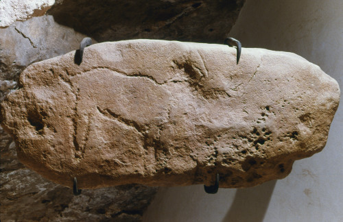 Cave Art: Goat. /Nlimestone Block With An Engraved Goat Or Antelope, From Abri Cellier, Tursac, Dordogne, France, C30,000 B.C. Poster Print by Granger Collection - Item # VARGRC0167803