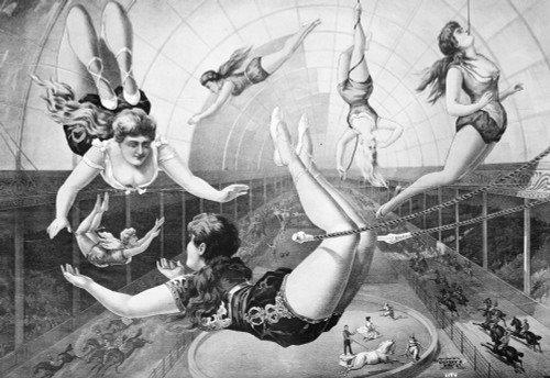 Trapeze Artists, 1890. /Namerican Lithograph Poster, 1890. Poster Print by Granger Collection - Item # VARGRC0003812