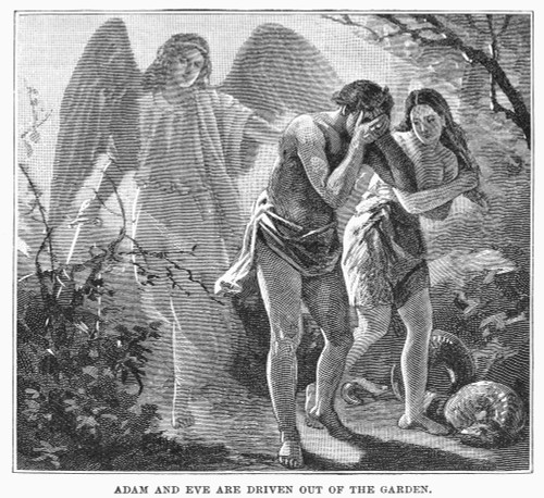 Adam And Eve. /Nadam And Eve Driven Out Of The Garden Of Eden. Line Engraving, 19Th Century. Poster Print by Granger Collection - Item # VARGRC0097462