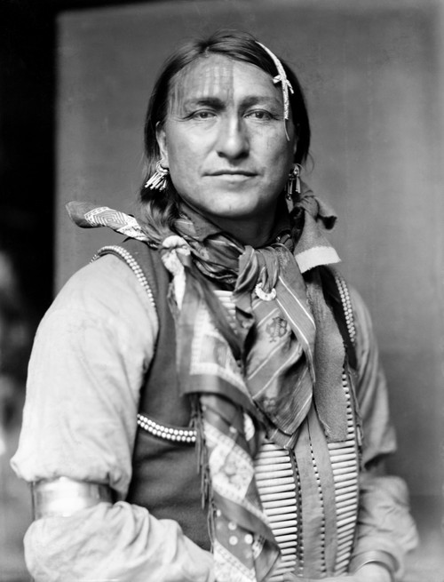 Sioux Native American, C1900. /Njoe Black Fox, A Sioux Native American From Buffalo Bill'S Wild West Show. Photographed By Gertrude K_Sebier, C1900. Poster Print by Granger Collection - Item # VARGRC0115749