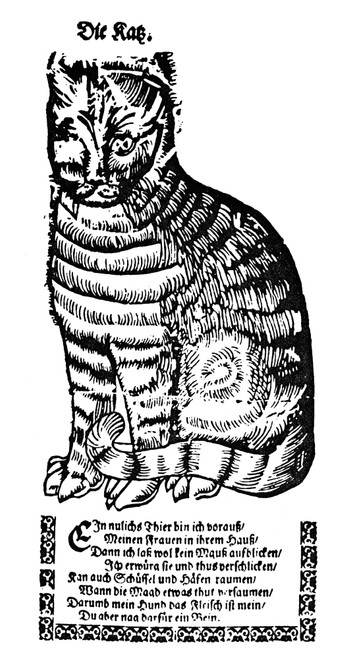 Cat. /Nwoodcut, German, Late 16Th Century. Poster Print by Granger Collection - Item # VARGRC0082080