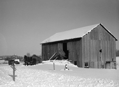 New York: Barn, 1937. /Na Barn In Jefferson County, New York. Photograph By Arthur Rothstein, 1937. Poster Print by Granger Collection - Item # VARGRC0326730