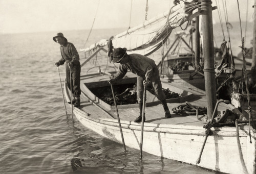 Hine: Oyster Fishing, 1911. /Ntwo Young Oyster Fisherman Aboard An Oyster Boat In Mobile Bay, The Reef Near Bayou La Batre, Alabama. Photograph By Lewis Hine, February 1911. Poster Print by Granger Collection - Item # VARGRC0166774