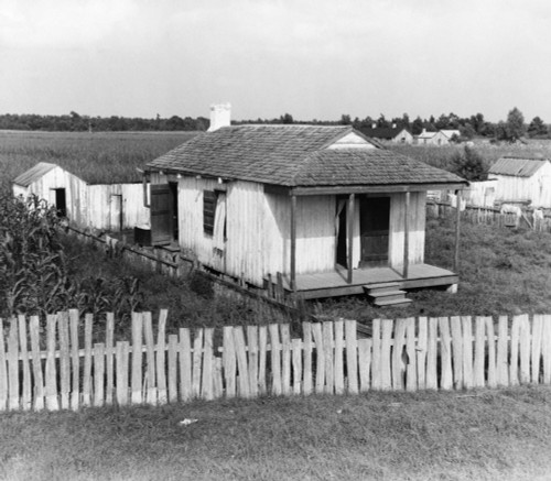 Louisiana: Cabin, 1937. /Na Worker'S Cabin On A Sugarcane Plantation At Bayou La Fourche, Louisiana. Photographed By Dorothea Lange, July 1937. Poster Print by Granger Collection - Item # VARGRC0123782