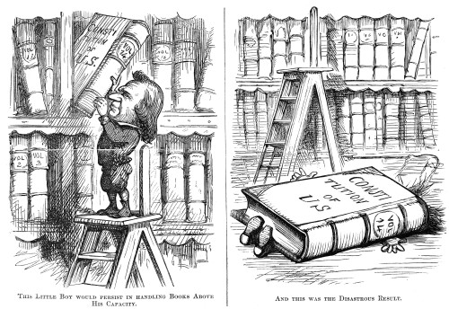 Cartoon: Impeachment, 1868. /Namerican Newspaper Cartoon Published During President Andrew Johnson'S Impeachment Trial. Cartoon, 1868. Poster Print by Granger Collection - Item # VARGRC0036222