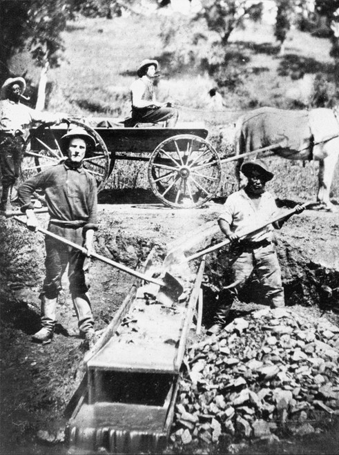 California: Gold Rush. /Nblack And White Gold Miners Prospecting In Spanish Flat, California, 1852. Poster Print by Granger Collection - Item # VARGRC0087789