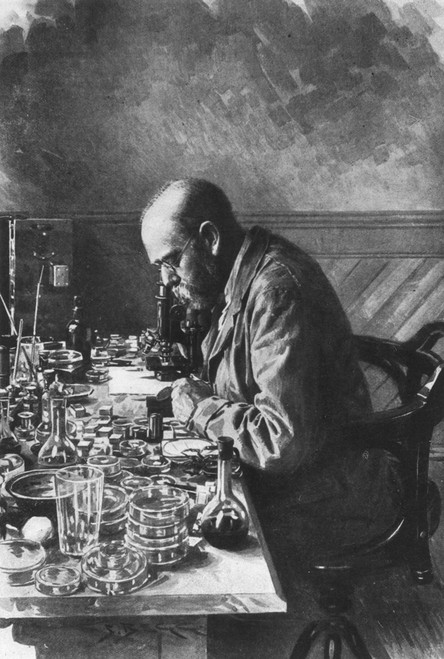 Robert Koch (1843-1910). /Ngerman Physician And Bacteriologist. Drawing, 1897. Poster Print by Granger Collection - Item # VARGRC0038324