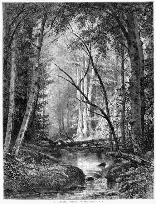 Catskill Brook, 1873. /Nwood Engraving, American, 1873, After A Painting By Worthington Whittredge. Poster Print by Granger Collection - Item # VARGRC0037828