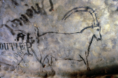 Cave Art: Ibex. /Nibex Painted In Black Outline On The Grand Ceiling Of The Rouffignac Cave, Dordogne, France, C11,000 B.C. (Graffiti Left By A Visitor In 1909 Is Visible At Lower Left). Poster Print by Granger Collection - Item # VARGRC0167855